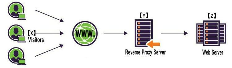 reverse proxy server