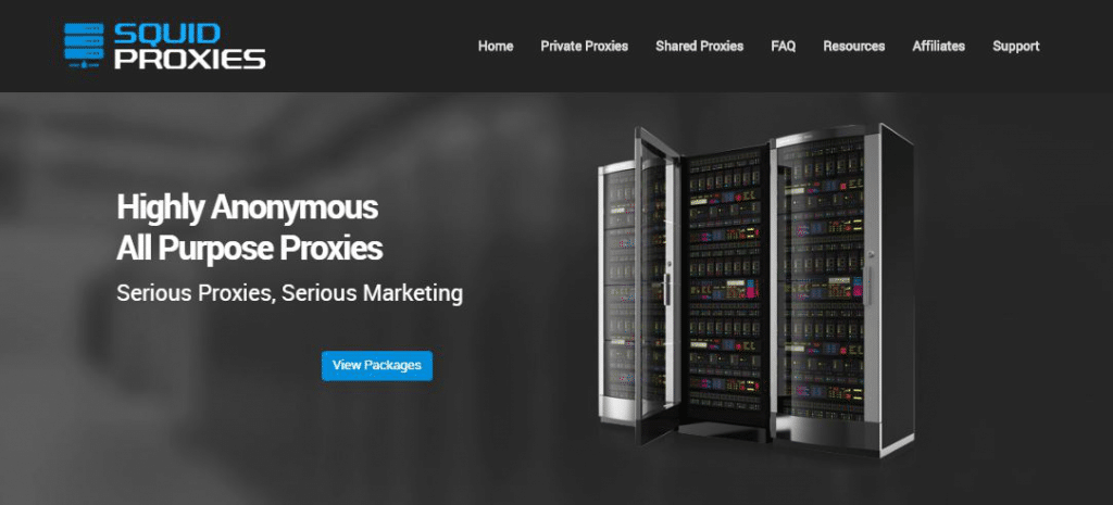 Squidproxies website homepage